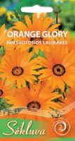 Laumakės Orange Glory