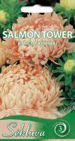 Kininiai ratiliai Salmon Tower