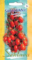 Valgomieji pomidorai Santasian F1