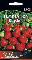 Braškės Temptation