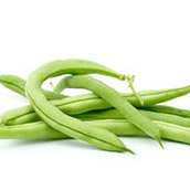 Beans, broad beans