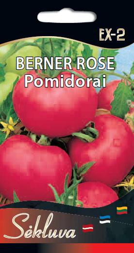 Berner rose