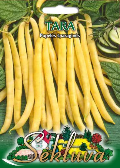 Pupeles Tara