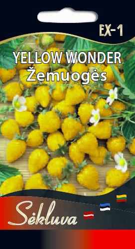 yellow-wonder