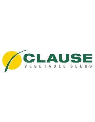 clause logo