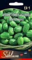 Afrikietiskieji agurkai Melotrijos