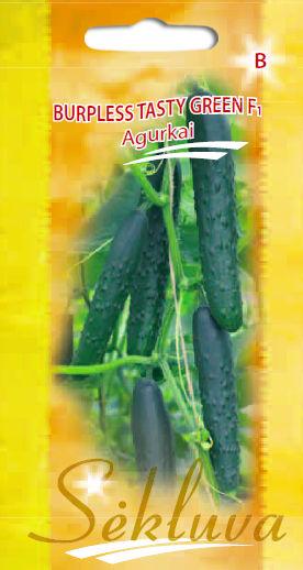 Agurkai Burbless Tasty Green F1