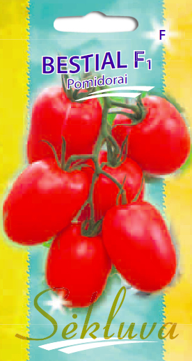 Pomidorai Bestial F1