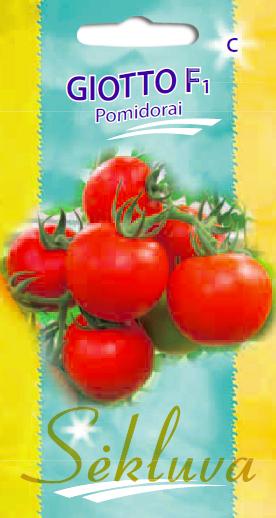 Pomidorai Gioto F1