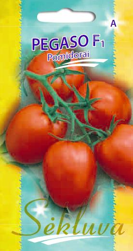 Pomidorai Pegaso F1