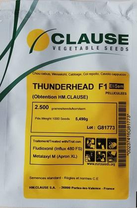 thunderhead F1