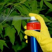 Augalų apsaugos priemonės