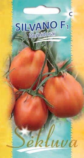 Pomidorai Silvano F1